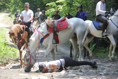 horseback riding tour.jpeg