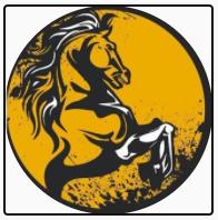 Gökhan Atçılık & At Veterinerliği Kliniği