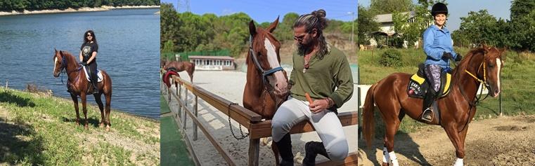Çakır Bey At Çiftliği