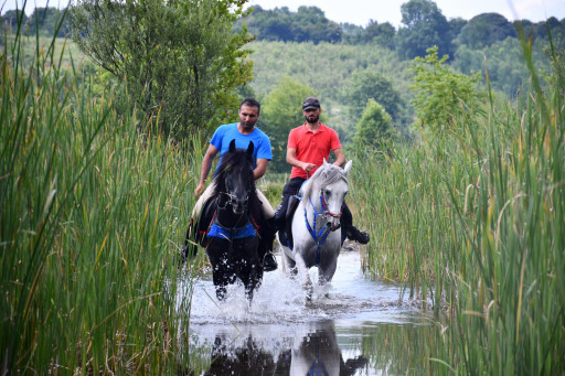 Horseback Riding Tour in Kartepe 2 Hours