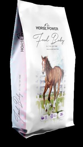 HORSE POWER FOAL  BABY 20KG