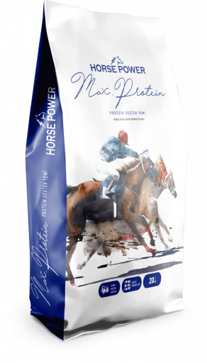 HORSE POWER MAX PROTEİN 20 KG