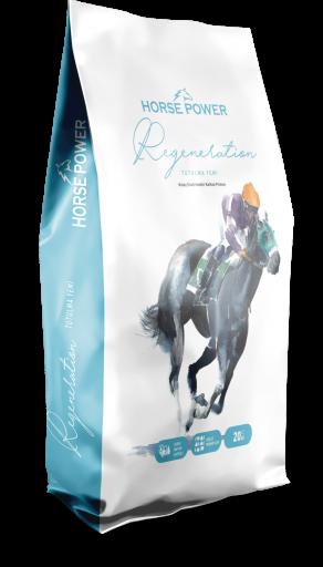 HORSE POWER REGENERATİON 20 KG